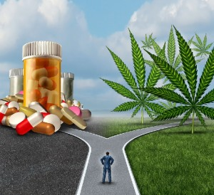 Seattle-Hempfest-Blog-Cannabis-vs-pharma