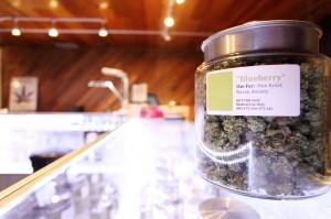 Seattle-Hempfest-Medical-Cannabis