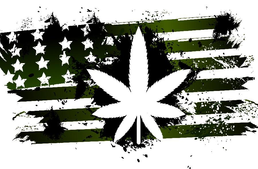 Seattle-Hempfest-United-States-Of-Cannabis